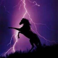 thunderbolt_44